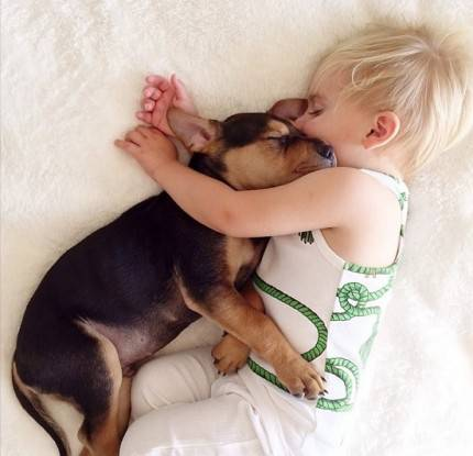 beau e theo dormono insieme