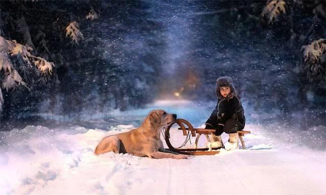 bimbo e cane in inverno