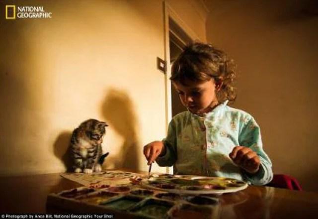 bambina dipinge acquerello seduta su un tavolo allle prime luci del mattino, un gattino posato sul tavolo la osserva