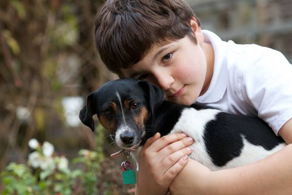 bambino abbraccia cane
