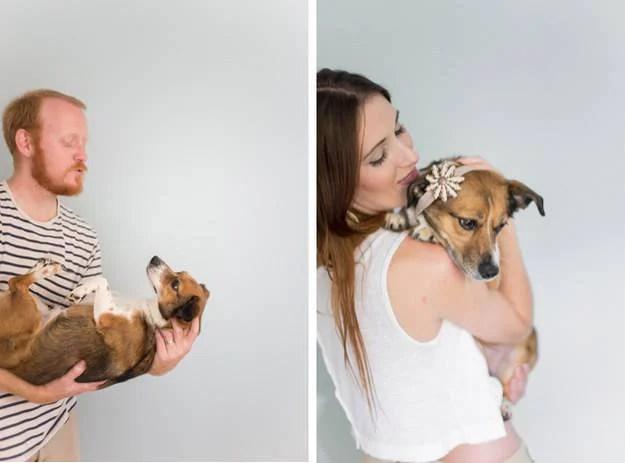 padroni tengono in braccio cane