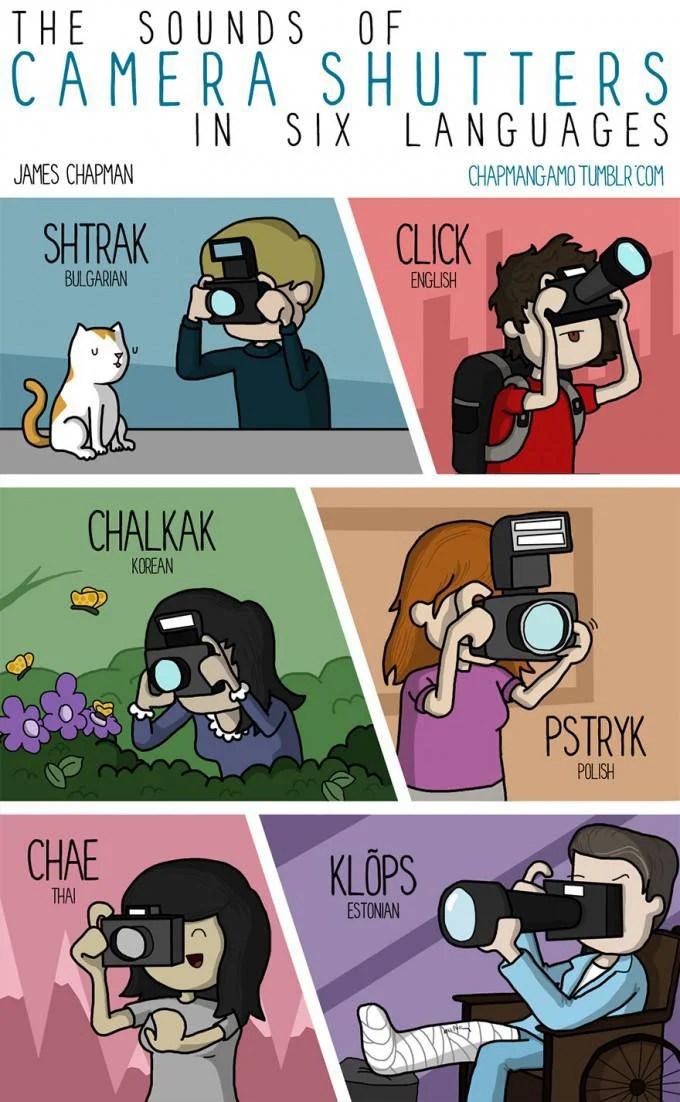 vignetta macchina fotografica