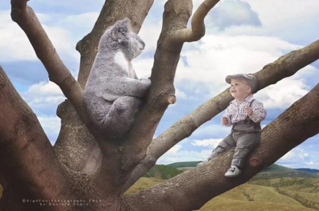 bimbo con koala