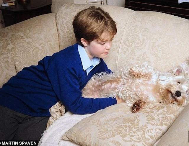 mamma ama cane più del figlio 2