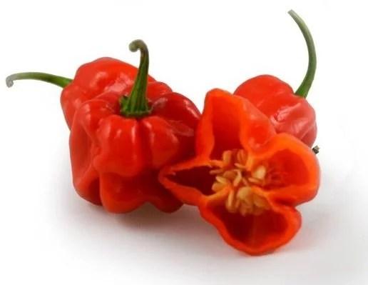 habanero - Picante Veneno: As Pimentas Mais Ardidas