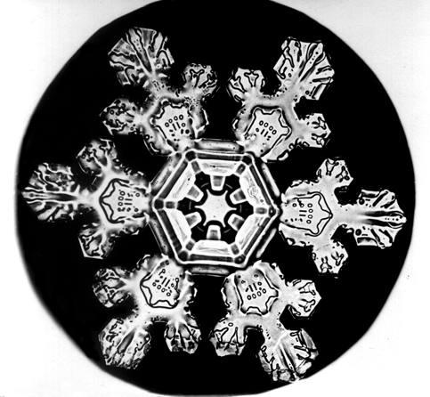 Se a teoria estiver correta, a mesma física que se identifica como responsável pela origem dos seres-vivos poderia explicar a formação de mais outras estruturas padronizadas na natureza. Flocos de neve, dunas de areia e vórtices auto-replicativos em um disco protoplanetário podem ser exemplos de uma adaptação à dissipação. Imagem por: Wilson Bentley