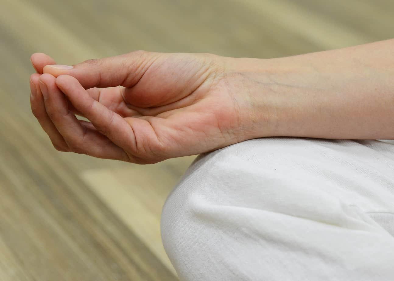 Cronología del Yoga y estilos