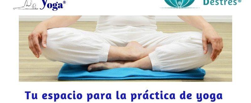 ¿Qué buscas en el yoga?