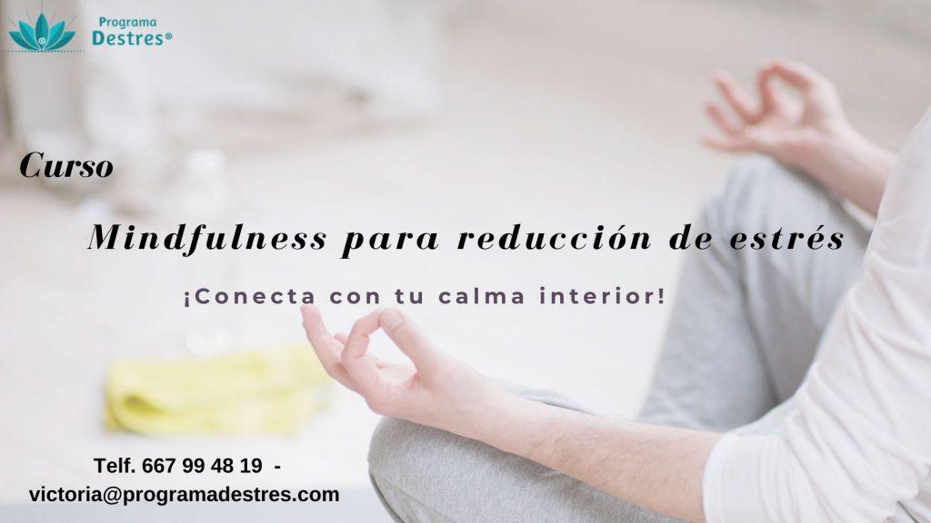 Curso Mindfulness Enero 2020 en Vigo