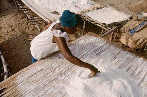 Le ramassage du sel solaire sur bache, sechage du sel. Site salicole de Marara. Gathering the sun salt on the plastic covering, the bache, and drying of the salt. Marara village.