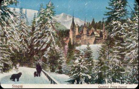 Castelul-Peles1
