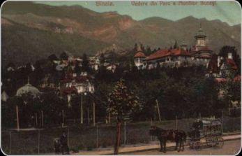 Vedere-din-parc-a-Munților-Bucegi