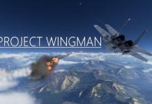 Project Wingman VR