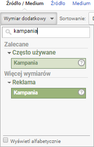 kampania w Google Analytics