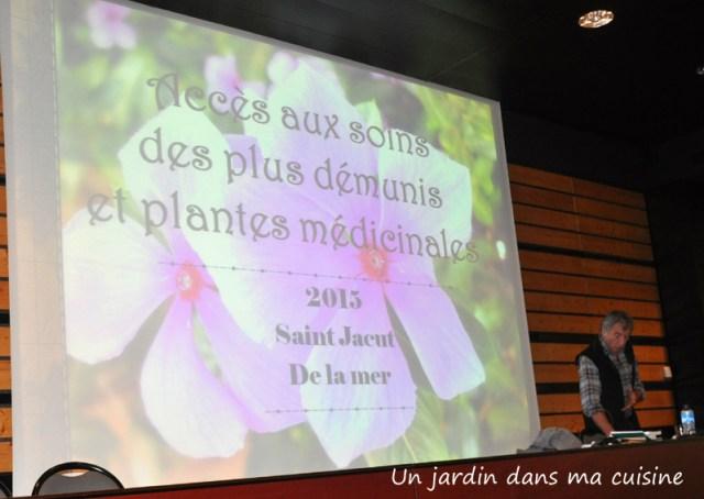 Un_jardin_dans_ma_cuisine_27