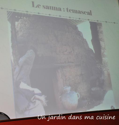 Un_jardin_dans_ma_cuisine_4