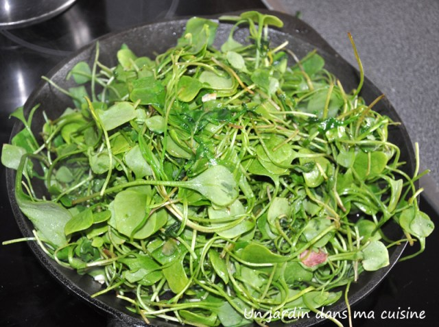 lentilles-au-pourpier-un-jardin-dans-ma-cuisine