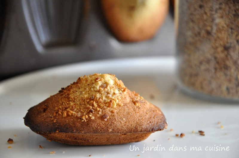 madeleine-un-jardin-dans-ma-cuisine