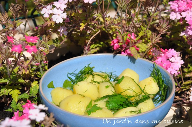 salade pommes de terre aneth persil citron un jardin dans ma cuisine