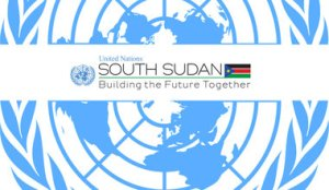 UNMISS – Property Control and Inventory Assistant – FS5