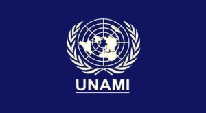 UNAMI-Baghdad-Information Management Systems-109483-PO