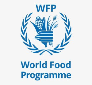 UN-WFP Job in Syria, Security Assistant SC5 – Qamishly VA056-2019 (106272)