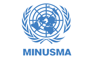 UN Job Opening, Vehicle Technician, FS5, MINUSMA-118965