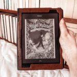 Fingus Malister (tome 1) : Feux follets, mandragore et cadavre frais, d'Ariel Holzl