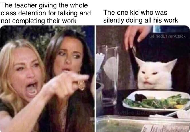 Woman Pointing at Cat - Funny Memes