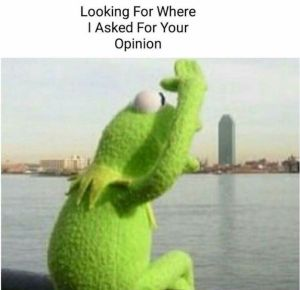 Kermit the Frog Meme Opinions 1