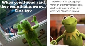 cover image about kermit the frog funny memes