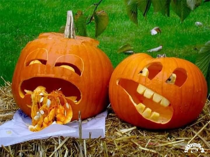 funny pumpkin crying and vomiting face picture239676842575802176