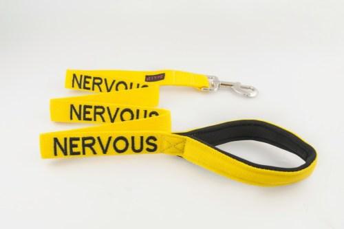 nervous dog lead