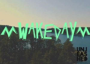 wakeskate-day