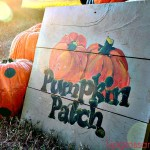 Punkin' Patch