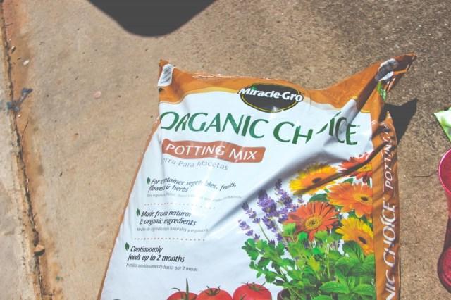 Miracle Gro Organic Choice