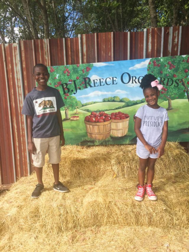 B.J. Reece Apple Orchard