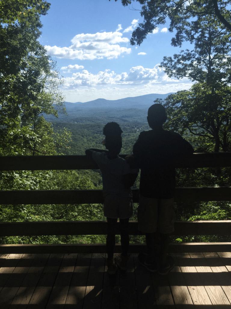 Amicalola Falls Georgia