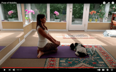 Best Yoga Stretches for the Hips