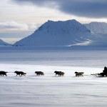 最特別的冰島體驗 : 除了環島,冰島還可以怎麼玩?