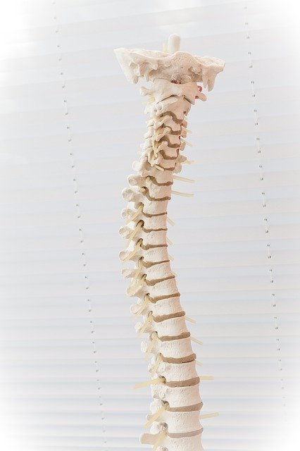 improve your back discomfort with these good tips 1 - Improve Your Back Discomfort With These Good Tips!