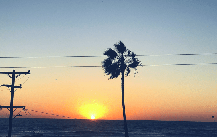 How To Explore San Diego Like A Local
