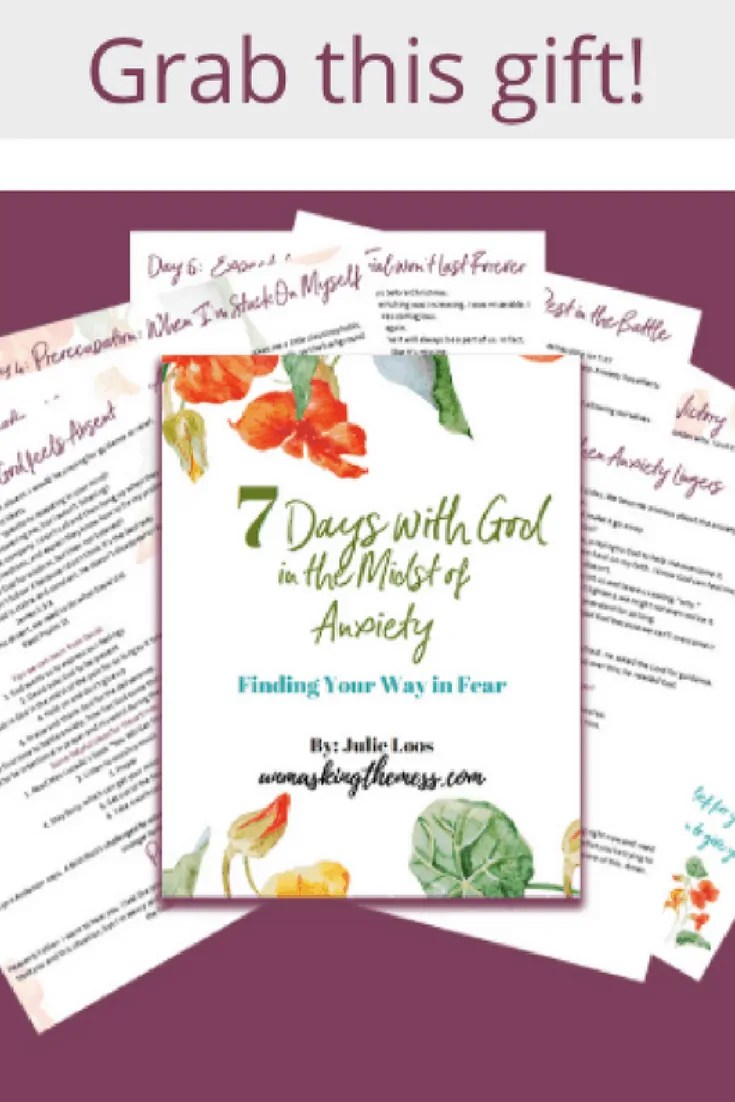 7 Days with God in the Midst of Anxiety. Free subscriber gift! Learn lessons from the Bible on how to cope with anxiety. Learn how to find you way in fear with this devotional.
