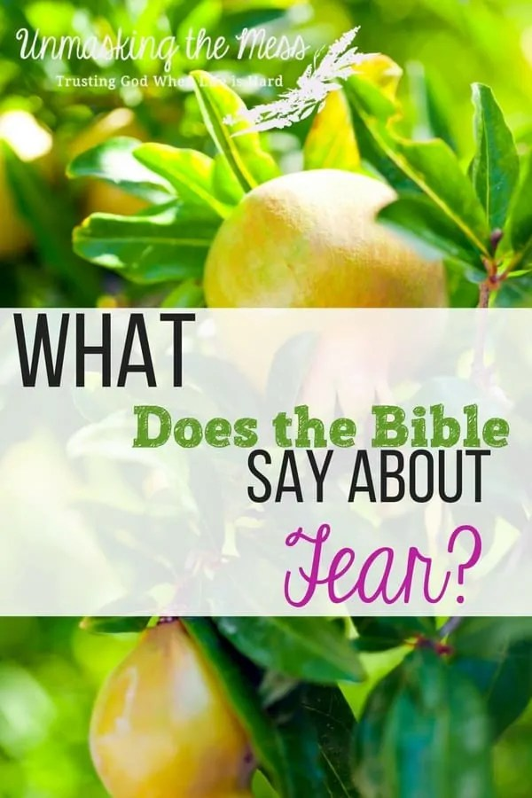 What Does the Bible Say about Fear? Are you fearful and tense? How do we live in this scary world without letting these emotions overwhelm? Bible verses about fear.