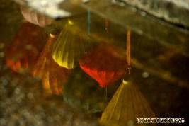 reflexes vietnam (4)