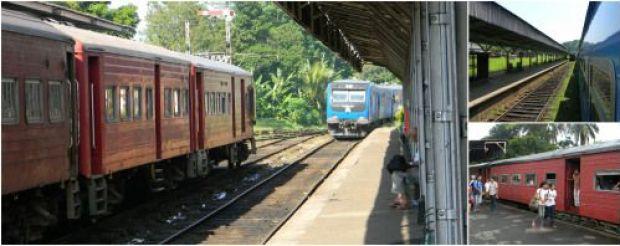 tren sri lanka experiencia en asia