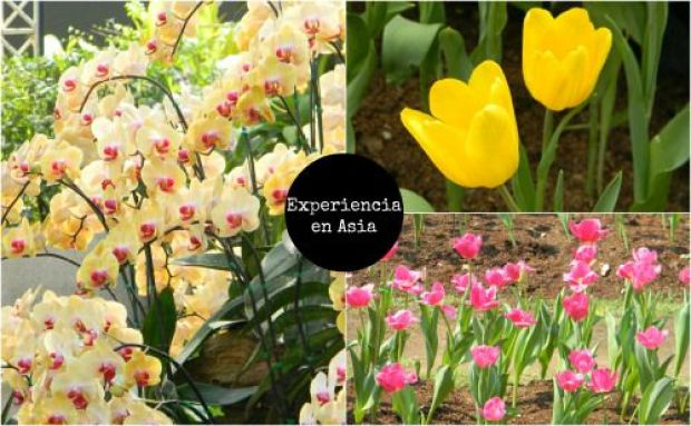 un mundo de experiencias blog