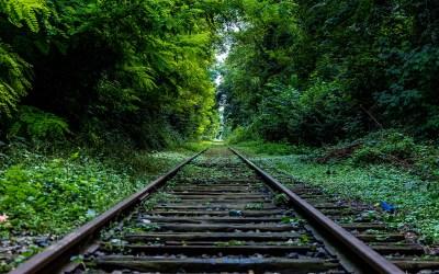 Paseo en tren -II-