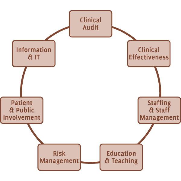The Unoffical Guide To Medical Research - Clinical Governance - Diagram image