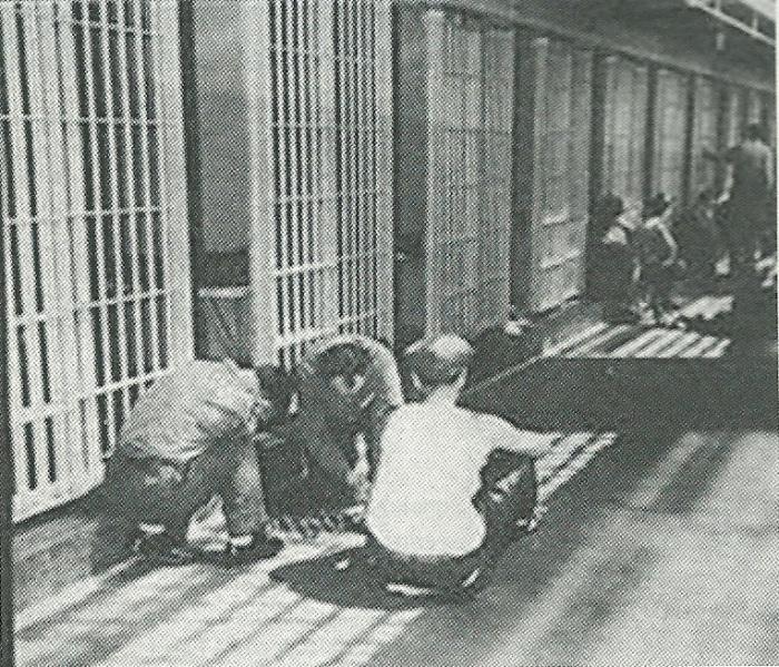 finestra-a-scacchi